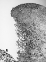 30_nuit-blanchecdfemilie-traverse15.jpg