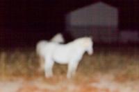 30_nuit-blanchecdfemilie-traverse6.jpg